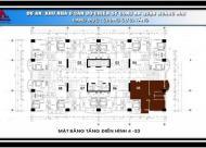 Chính chủ bán căn chung cư 79 Thanh Đàm, căn góc 1505, DT 89.53m2 giá 13tr/m2. LH 0906237866