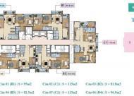 Cần bán căn hộ CC Xuân Phương Tasco, căn tầng 903 &15B4, DT: 92.5-58.6m2 ,gía 17tr/m2. 0966377635