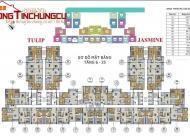 Bán Cắt Lỗ 2CHCC Goldsilk Complex Vạn Phúc, 1804(114m2) và 1608(72,96m2) giá 18tr/m2. 0944 042 180