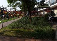 Cần bán lô 30, 38 nhà phố thương mại SH02 Gamuda Gardens, Hoàng Mai