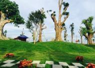 Bán đất nền dự án Biệt Thự Phú Cát City giá hấp dẫn cơ hội bốc thăm trúng thưởng lên tới 1 tỷ đồng