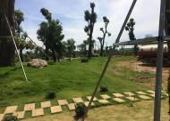 Cần bán 50 lô đất nền biệt thự trục Đại Lộ Thăng Long chỉ từ 10tr/m2. LH: 0942044956