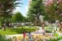 Khu vườn xanh ngay trong nhà ở Anland Nam Cường
